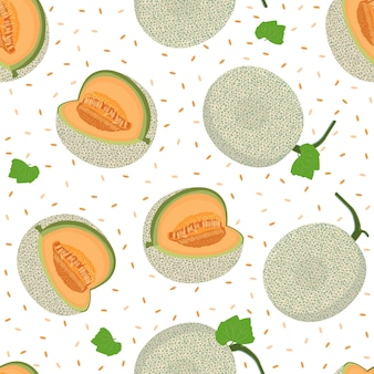 Melon whole seamless pattern
