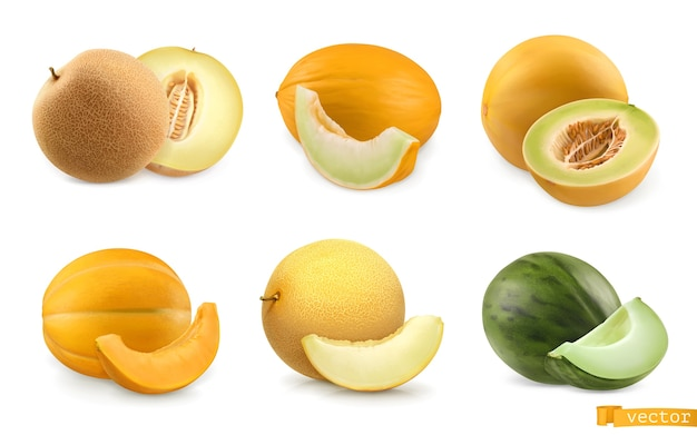 Melons, sweet fruits. 3d realistic icon set