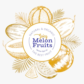 Melons and watermelons with tropical leaves  template. hand drawn  exotic fruit illustration. engraved style fruit .