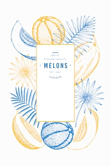 Melons and watermelons with tropical leaves template.