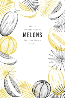 Melons with tropical leaves banner template
