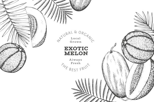 열대 잎이 있는 멜론 디자인 서식 파일입니다. 손으로 그린 이국적인 과일 그림입니다. 레트로 스타일 과일입니다.