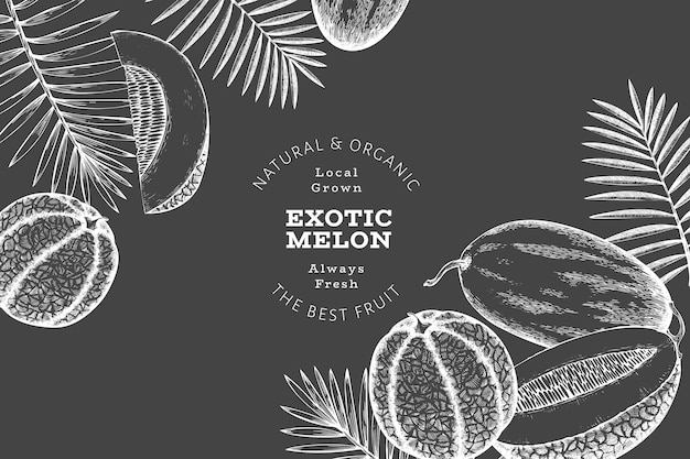 Melons with tropical leaves design template. hand drawn vector exotic fruit illustration on chalk board. retro style fruit banner.