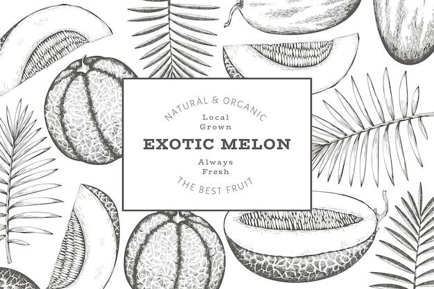 열대 잎이 있는 멜론 디자인 서식 파일입니다. 손으로 그린된 벡터 이국적인 과일 그림입니다. 레트로 스타일 과일 배너입니다.