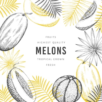 Melons with tropical leaves design template.