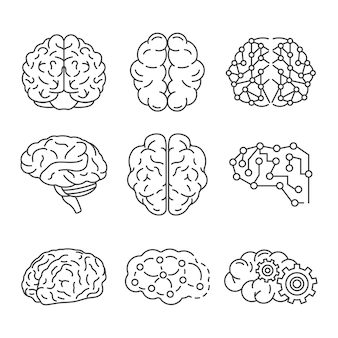 Memory brain icon set. outline set of memory brain vector icons