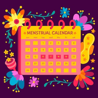 Menstrual calendar concept illustrated