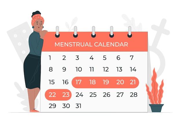 Menstrual calendar concept illustration