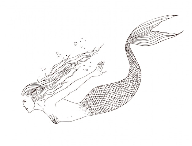 Mermaid under the water, side view, hand drawn contour illustration. beautiful naiad.