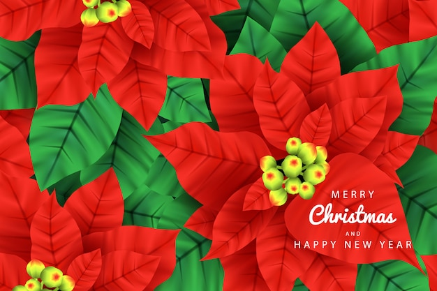 Merry christmas background vector with poinsettia plants