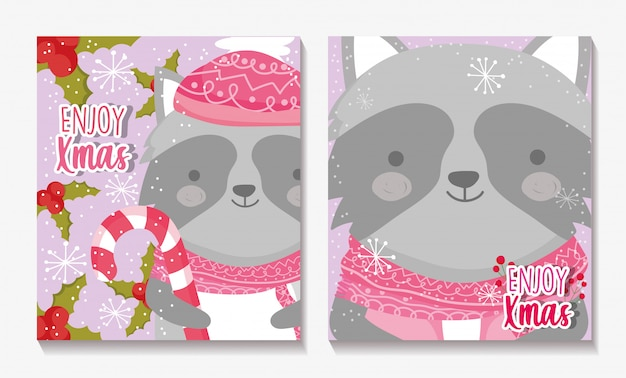 Merry christmas cards with raccoon with scarf