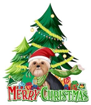 ヨークシャーテリア犬とクリスマスツリーとメリークリスマスフォント