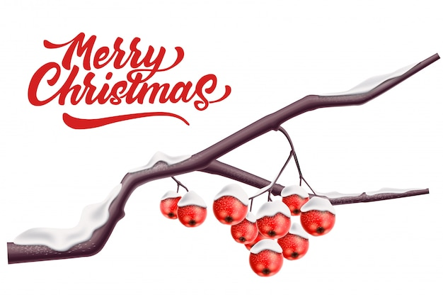 Merry christmas lettering rowan tree branck with red berry with snow