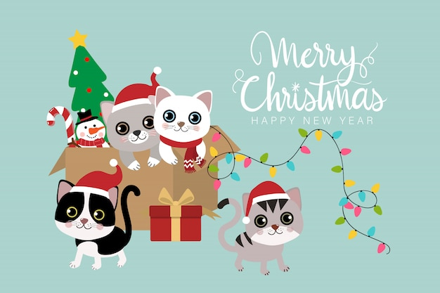 Merry christmas with cute cat.