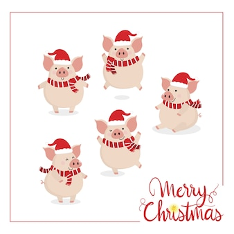 Merry christmas with cute pig.