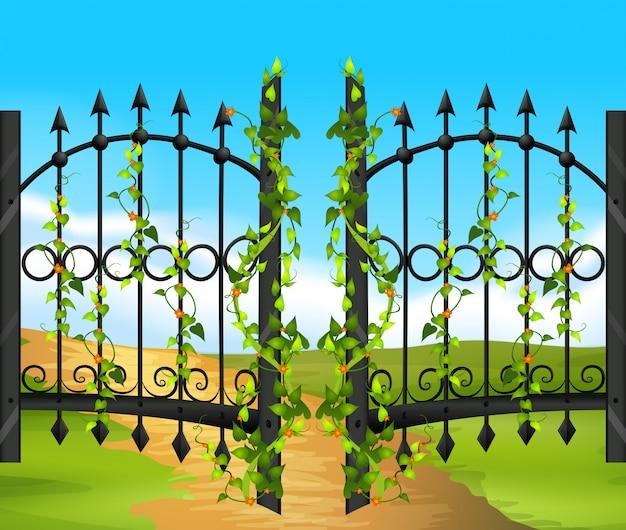 金属フェンスとぶどうの木と花