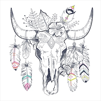 Mexican bull skull with feathers on horns