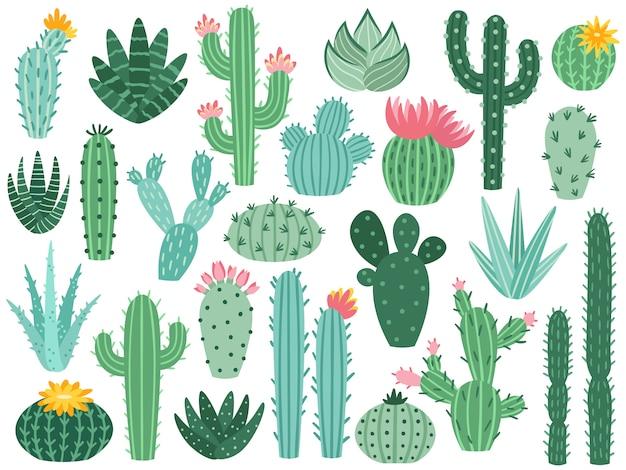 멕시코 선인장과 알로에. 사막 가시 식물, 멕시코 선인장 꽃과 열대 집 식물 격리 컬렉션