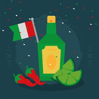 Mexican flag and tequila icons