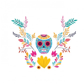 Mexican skull on white card