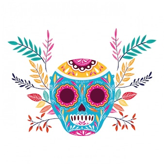 Mexican skull on white