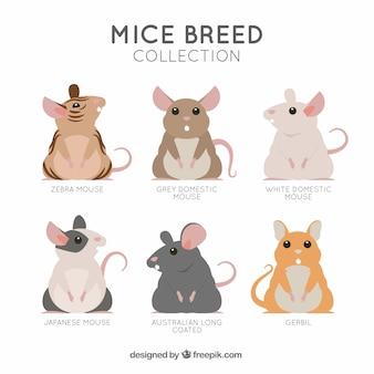 Коллекция породы мышей в плоском стиле