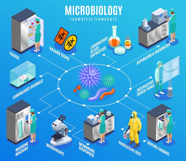 Microbiology isometric flowchart with fridge laboratory animals washing machine microscope membrane dispenser protective suit and other descriptions illustration