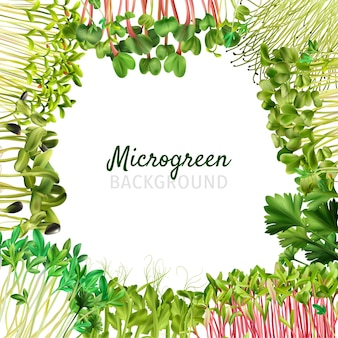 Микрозелень фоновая рамка