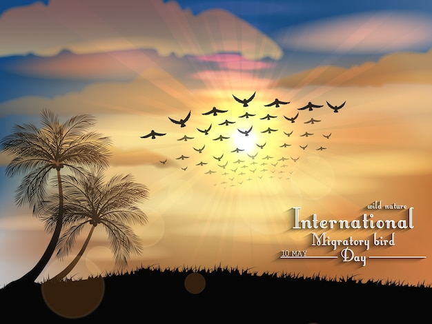 Migratory birds day banner with sunset light view