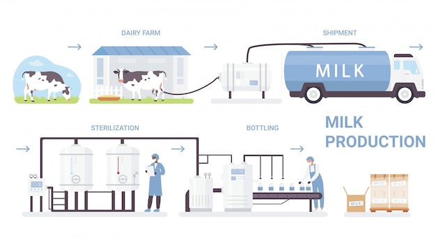 Milk bottle production process  illustration. cartoon  infographic poster with processing line in automated dairy factory, making pasteurization and bottling milk product  on white