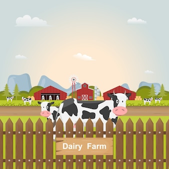 시골 농장 안에 우유 암소입니다.