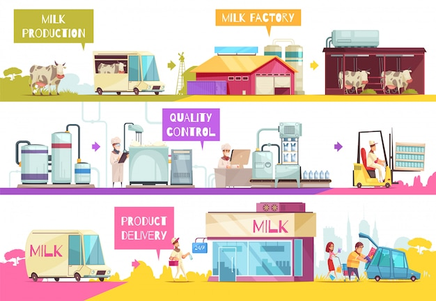 Milk production infographics composition