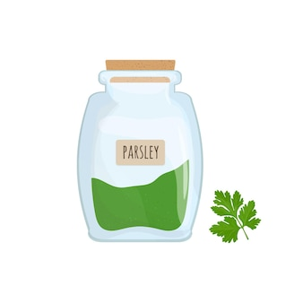 Рубленая и сушеная петрушка хранится в стеклянной банке, изолированной на белом фоне. ароматные травы, вкусные пищевые специи, травяной ингредиент для приготовления пищи в прозрачном кухонном горшке. красочные плоские векторные иллюстрации.