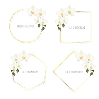 Minimal flat style white phalaenopsis orchid wreath with golden frame collection isolated on white