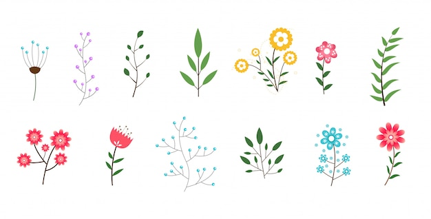 Minimal flowers and leaves collection