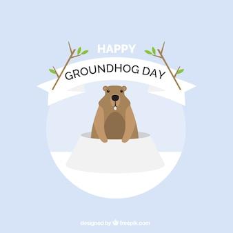 Minimalist background of groundhog day