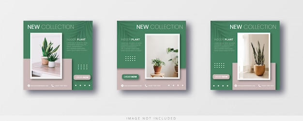 Minimalist modern indoor plants instagram post and banner sale template