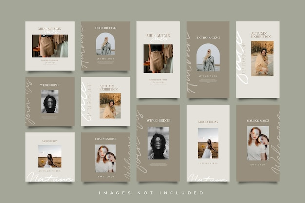 Minimalist social media post and stories template collection