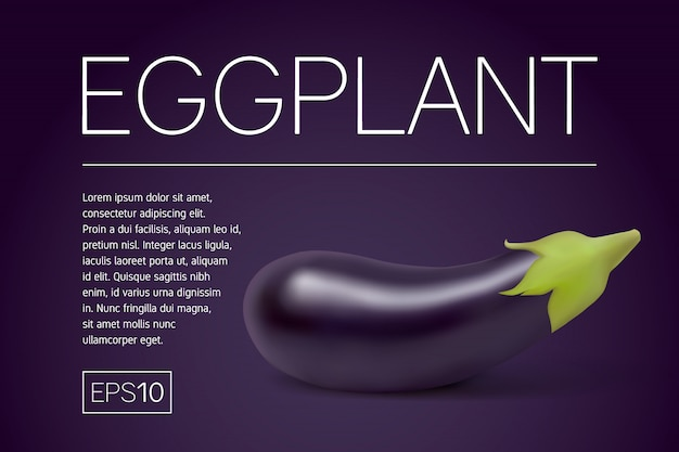 Minimalistic banner with a realistic aubergine on purple frame for title and text.