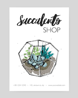 Minimalistic flyer template with green succulents growing in glass