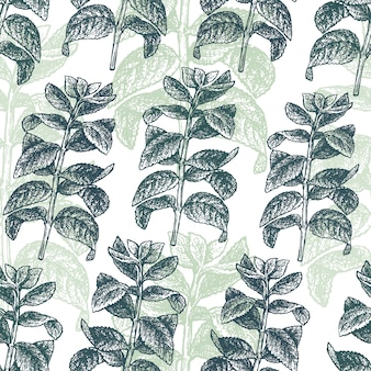 Mint branch seamless pattern. engraved style.