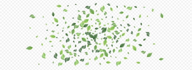 ミント緑の葉のハエのテンプレート