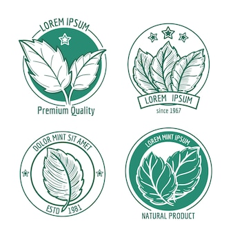 Mint leaf logo  or menthol spearmint. healthy fresh herb, peppermint organic badge