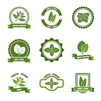 Set di loghi, etichette e badge di foglie di menta.