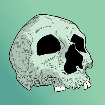 ミスティックの頭蓋骨