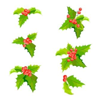 葉と果物をセットしたヤドリギのクリスマス植物ホリーベリーの装飾コレクション