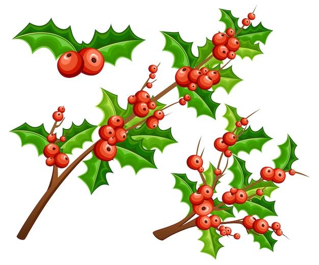 Омела декоративная. ветви с красными ягодами и зелеными листьями. рождественское украшение. иллюстрация на белом фоне
