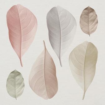 パステルの葉のミックス