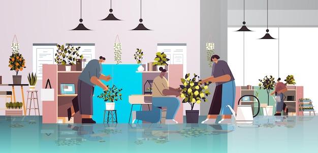 Бизнесмены смешанной расы заботятся о горшечных растениях в концепции офисного садоводства по горизонтали во всю длину