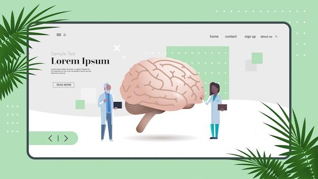 Mix race doctors inspecting checking brain human internal organ examination healthcare medicine concept full length copy space horizontal